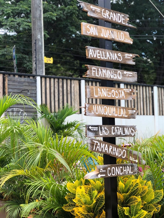 hotel house playa tamarindo - 13